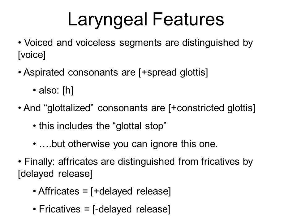 Laryngeal Features Voiced and voiceless segments are distinguished by [voice] Aspirated consonants are [+spread glottis]